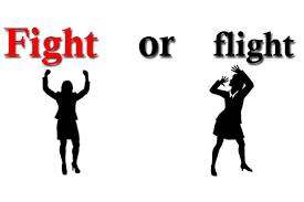 flight-or-flight-image